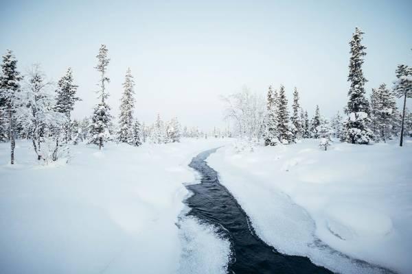 Une semaine en Laponie ❄️