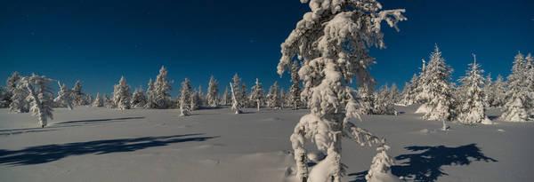 Bon plan Laponie : conseil et astuce - Guide Officiel