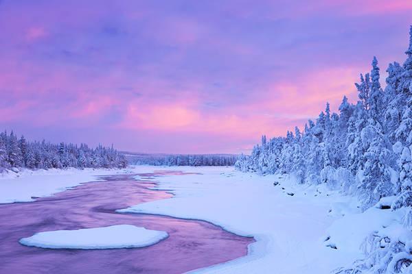 Voyage Laponie - Chien de traîneau - ski de fond - pêche