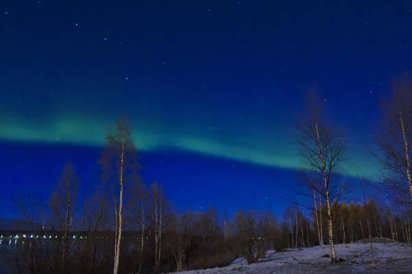 Voyage en Laponie - Rovaniemi (01-2019)