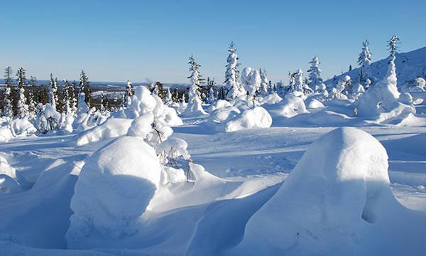 Laponie - Voyage Laponie sur mesure, séjour Laponie à la ...