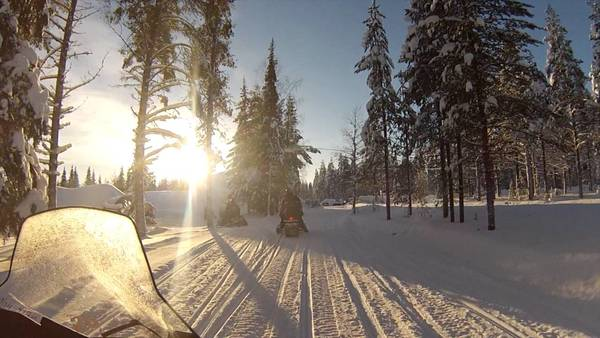 LAPONIE - Madame Voyage Laponie