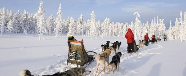 La Laponie 5 jours magiques au pays du Père Noël