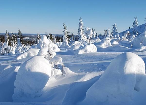 3 bonnes raisons de partir en Laponie finlandaise - L'Expert