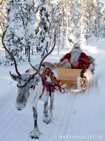 A la découverte de la Laponie sauvage !