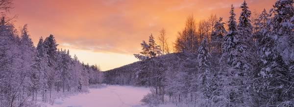 Voyage en Laponie au pays du Père Noël / Finlande
