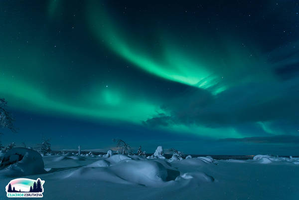 Laponie | Aventure Arctique