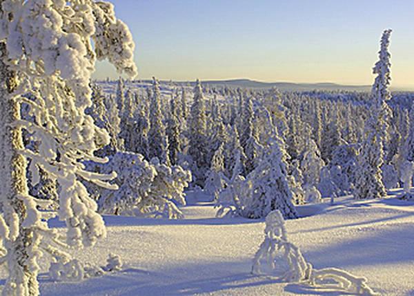 Conseils pour être un voyageur responsable en Laponie ⋆